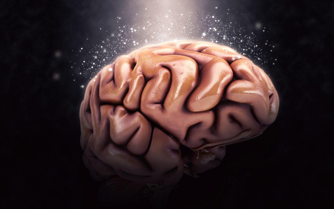 La música y lo que provoca en nuestro cerebro