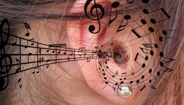 oido absoluto y oido relativo