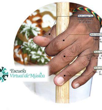 posición de los dedos en la gaita macho